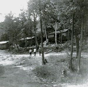 cabins 64
