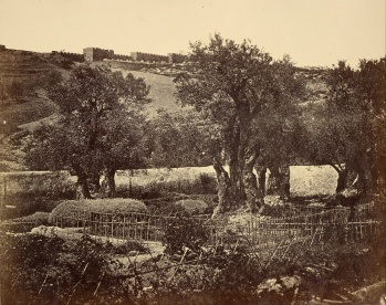 James_Robertson_(British_-_The_Garden_of_Gethsemane