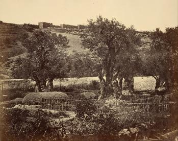 James_Robertson_(British_-_The_Garden_of_Gethsemane